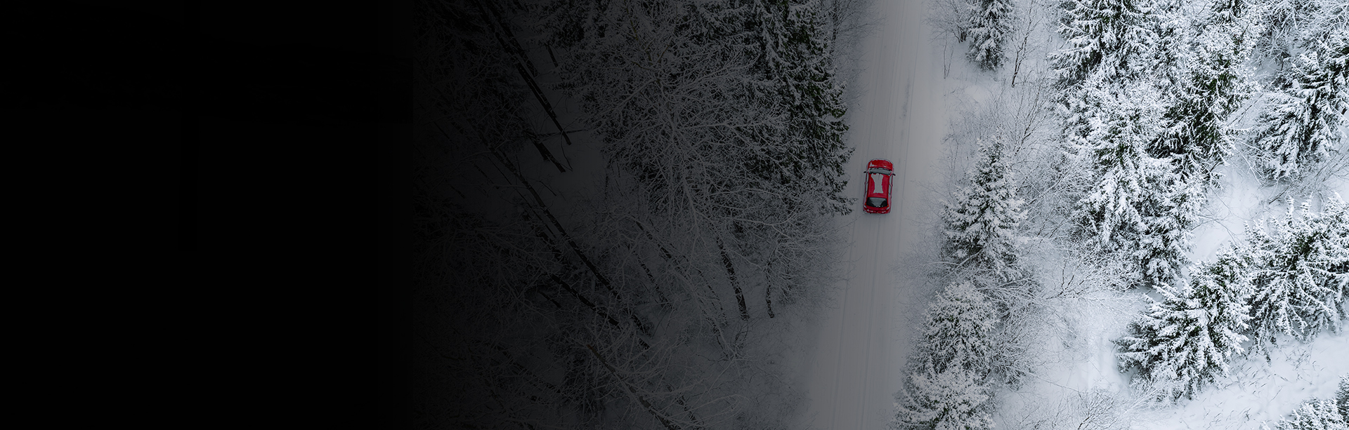 banner_vinter_copy
