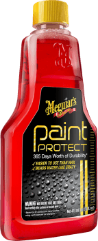 Paint Protect-20
