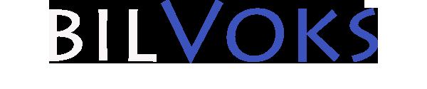 bv_logo_2020_1